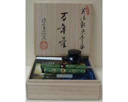 Sailor Arita Gen Emon Kiln Ouryokusai Kabuto Karakusa Arabesque Fountain Pen